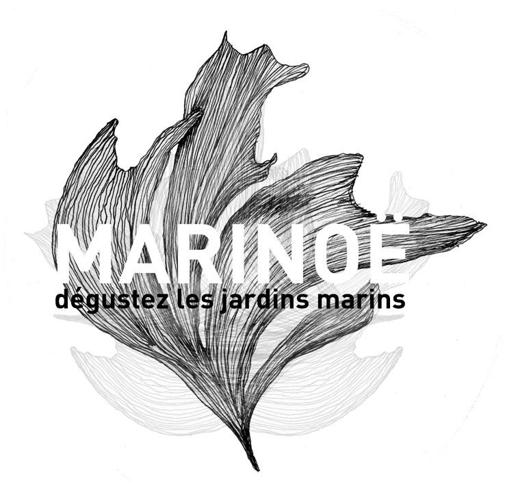 marinoeLOGO